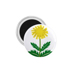 Sunflower Floral Flower Yellow Green 1 75  Magnets