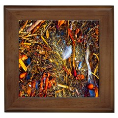 Abstract In Orange Sealife Background Abstract Of Ocean Beach Seaweed And Sand With A White Feather Framed Tiles