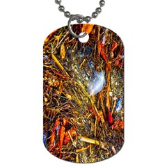 Abstract In Orange Sealife Background Abstract Of Ocean Beach Seaweed And Sand With A White Feather Dog Tag (one Side)
