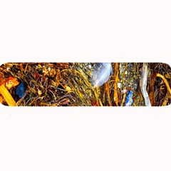Abstract In Orange Sealife Background Abstract Of Ocean Beach Seaweed And Sand With A White Feather Large Bar Mats