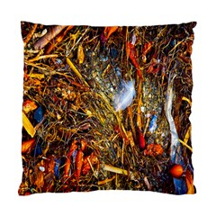 Abstract In Orange Sealife Background Abstract Of Ocean Beach Seaweed And Sand With A White Feather Standard Cushion Case (two Sides) by Nexatart