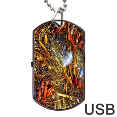 Abstract In Orange Sealife Background Abstract Of Ocean Beach Seaweed And Sand With A White Feather Dog Tag Usb Flash (two Sides) by Nexatart