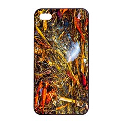 Abstract In Orange Sealife Background Abstract Of Ocean Beach Seaweed And Sand With A White Feather Apple Iphone 4/4s Seamless Case (black) by Nexatart