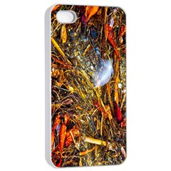 Abstract In Orange Sealife Background Abstract Of Ocean Beach Seaweed And Sand With A White Feather Apple Iphone 4/4s Seamless Case (white) by Nexatart