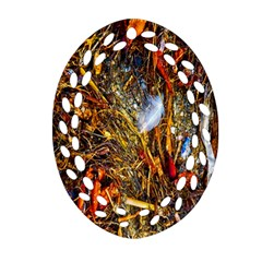 Abstract In Orange Sealife Background Abstract Of Ocean Beach Seaweed And Sand With A White Feather Oval Filigree Ornament (two Sides) by Nexatart