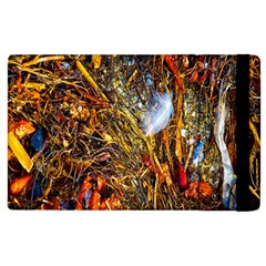 Abstract In Orange Sealife Background Abstract Of Ocean Beach Seaweed And Sand With A White Feather Apple Ipad 2 Flip Case by Nexatart