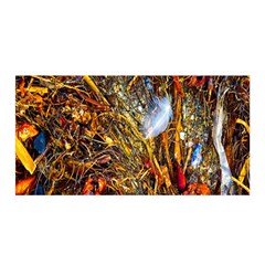 Abstract In Orange Sealife Background Abstract Of Ocean Beach Seaweed And Sand With A White Feather Satin Wrap