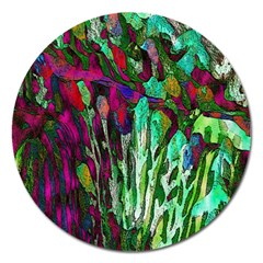 Bright Tropical Background Abstract Background That Has The Shape And Colors Of The Tropics Magnet 5  (round) by Nexatart