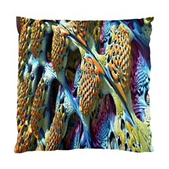 Background, Wallpaper, Texture Standard Cushion Case (two Sides) by Nexatart