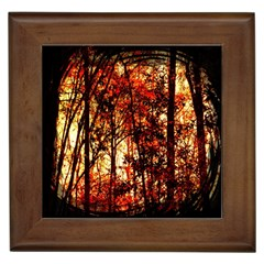 Forest Trees Abstract Framed Tiles