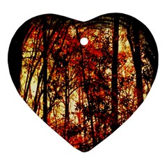 Forest Trees Abstract Ornament (heart) by Nexatart