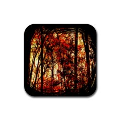 Forest Trees Abstract Rubber Square Coaster (4 Pack)  by Nexatart