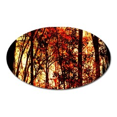Forest Trees Abstract Oval Magnet by Nexatart