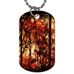 Forest Trees Abstract Dog Tag (one Side) by Nexatart