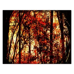 Forest Trees Abstract Rectangular Jigsaw Puzzl by Nexatart