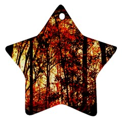 Forest Trees Abstract Star Ornament (two Sides)