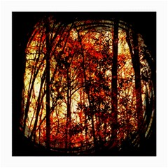 Forest Trees Abstract Medium Glasses Cloth by Nexatart