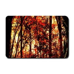 Forest Trees Abstract Small Doormat  by Nexatart
