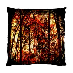 Forest Trees Abstract Standard Cushion Case (two Sides) by Nexatart