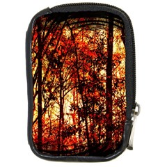 Forest Trees Abstract Compact Camera Cases