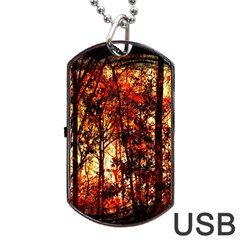 Forest Trees Abstract Dog Tag Usb Flash (one Side)