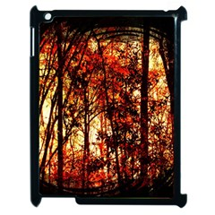 Forest Trees Abstract Apple Ipad 2 Case (black) by Nexatart