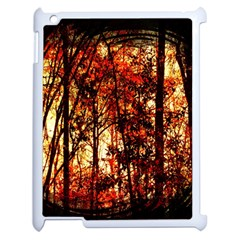 Forest Trees Abstract Apple Ipad 2 Case (white) by Nexatart