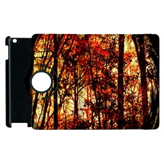 Forest Trees Abstract Apple Ipad 2 Flip 360 Case by Nexatart