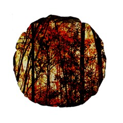 Forest Trees Abstract Standard 15  Premium Round Cushions