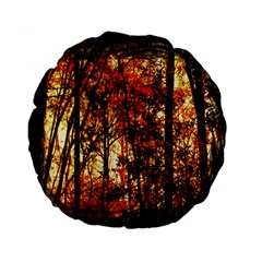 Forest Trees Abstract Standard 15  Premium Flano Round Cushions