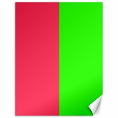 Neon Red Green Canvas 12  x 16