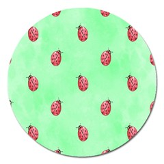 Pretty Background With A Ladybird Image Magnet 5  (round)