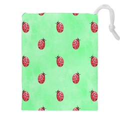 Pretty Background With A Ladybird Image Drawstring Pouches (xxl)