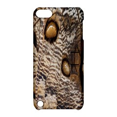 Butterfly Wing Detail Apple Ipod Touch 5 Hardshell Case With Stand by Nexatart