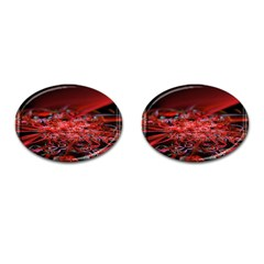 Red Fractal Valley In 3d Glass Frame Cufflinks (oval) by Nexatart