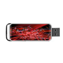 Red Fractal Valley In 3d Glass Frame Portable Usb Flash (two Sides)