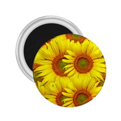 Sunflowers Background Wallpaper Pattern 2 25  Magnets