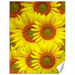 Sunflowers Background Wallpaper Pattern Canvas 12  x 16