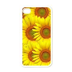 Sunflowers Background Wallpaper Pattern Apple Iphone 4 Case (white)
