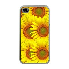 Sunflowers Background Wallpaper Pattern Apple Iphone 4 Case (clear)