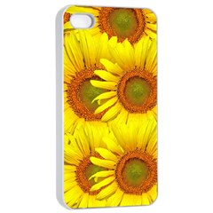 Sunflowers Background Wallpaper Pattern Apple Iphone 4/4s Seamless Case (white)