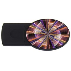Background Image With Wheel Of Fortune Usb Flash Drive Oval (4 Gb) by Nexatart