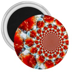 Stylish Background With Flowers 3  Magnets by Nexatart