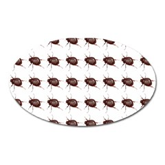 Insect Pattern Oval Magnet by Nexatart