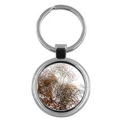 Digitally Painted Colourful Winter Branches Illustration Key Chains (round)