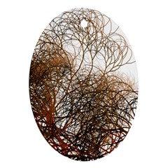 Digitally Painted Colourful Winter Branches Illustration Oval Ornament (two Sides) by Nexatart