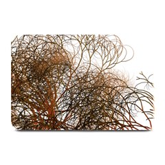 Digitally Painted Colourful Winter Branches Illustration Plate Mats by Nexatart