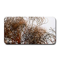 Digitally Painted Colourful Winter Branches Illustration Medium Bar Mats by Nexatart