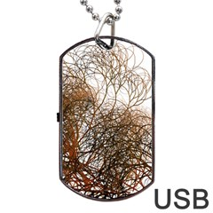 Digitally Painted Colourful Winter Branches Illustration Dog Tag Usb Flash (one Side) by Nexatart