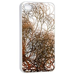 Digitally Painted Colourful Winter Branches Illustration Apple Iphone 4/4s Seamless Case (white) by Nexatart